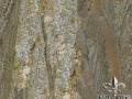 juparana-sucuri-granite