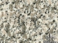 white-tiger-skin-granite