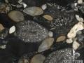 jurassic-black-granite